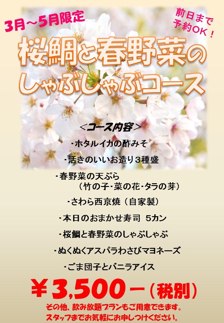 3月から桜鯛と春野菜のしゃぶしゃぶコース開始!!